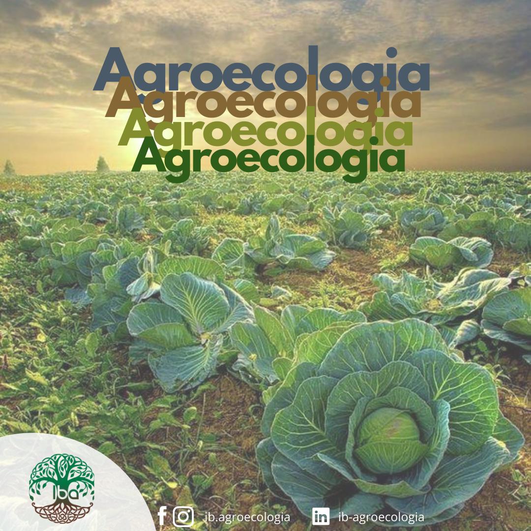 O uso da palavra AGROECOLOGIA: a capacidade de assumir diferentes significados em contextos variados.